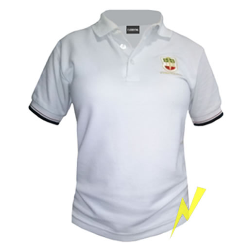 e85ccbf5a73be Playeras tipo polo│bordadas│personalizadas│stock expres│DF